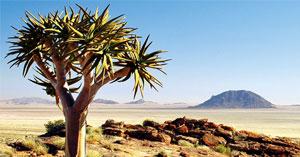 Gruppenreise Namibia